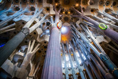 Ceiling and columns of Sagrada Familia Stock Photography