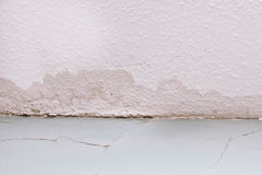 Ceiling damp. Spreading damp and rot on a celing due to a water leak Stock Photo