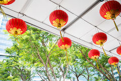 Ceiling decorated with hanging chinese lanterns Royalty Free Stock Images