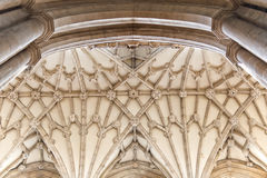 Ceiling detail view in old cathedral Stock Images