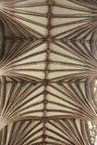 Ceiling of Exeter cathedral Royalty Free Stock Image