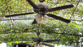 Ceiling fans in the garden stock video footage