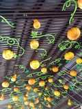 Ceiling with Halloween decorations. Pumpkins nice design Royalty Free Stock Image