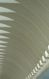 Ceiling of Interesting Forms Royalty Free Stock Photos