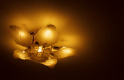 Ceiling light beautiful shape Royalty Free Stock Photography