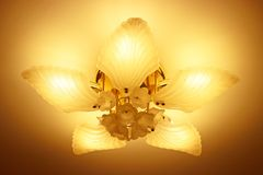 Ceiling lights. Ceiling lights install is ceiling Stock Images