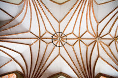 Ceiling patterns Royalty Free Stock Photos