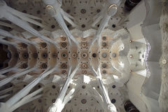 The ceiling of the Sagrada Familia in Barcelona, Spain Stock Photography