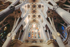 Ceiling of sagrada familia catherdral Stock Photography
