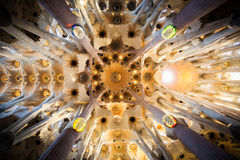 Ceiling of Sagrada Familia Royalty Free Stock Images