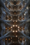 Ceiling of Sagrada Familia. View on the ceiling of Sagrada Familia, Barcelona Royalty Free Stock Photography