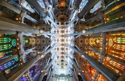 Ceiling of Sagrada Familia. A view of the ceiling at the nave of Sagrada Familia in Barcelona royalty free stock photo