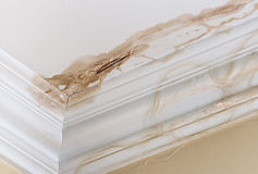 Ceiling Water damage. Peeling paint on an interior ceiling a result of water damage caused by a leaking pipe dripping down from upstairs a result of substandard Royalty Free Stock Images