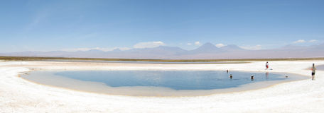 Cejar, Desert Lagoon. At Lagoon Cejar in San Pedro de Atacama the salt almost take you out from water Royalty Free Stock Images