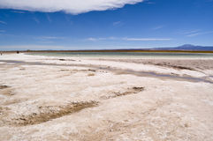Cejar Lagoon, Chile Royalty Free Stock Photography