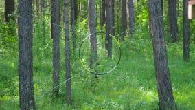 Cel dla dardy rozciągającej na drewnie zapas Antyczna zabawa Pojęcie kulturalna konserwacja zdjęcie wideo