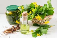 Celandine, aceite, tinte y raíces para la medicina herbaria fotos de archivo libres de regalías