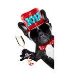 Celberation de chien de bonne année Image libre de droits