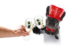 Celberation del perro de la Feliz Año Nuevo Imagen de archivo