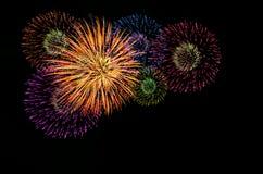 Celebração colorida dos fogos-de-artifício Fotos de Stock