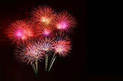 Celebra??o colorida dos fogos-de-artif?cio e o fundo do c?u noturno fotografia de stock