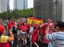 Celebración 2010 de la taza de mundo en Chicago fotos de archivo libres de regalías