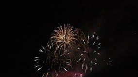 Celebración con los fuegos artificiales almacen de metraje de vídeo