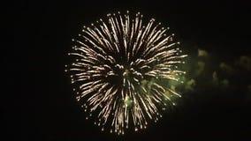 Celebración con los fuegos artificiales metrajes