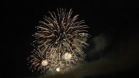 Celebración con los fuegos artificiales almacen de video
