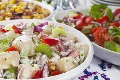 Celebración de la comida fría de la ensalada Imagen de archivo
