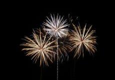 Celebración de los fuegos artificiales Imágenes de archivo libres de regalías