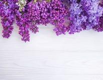 Celebración de madera blanca estacional del marco del fondo de la primavera del flor del ramo de la flor de la lila foto de archivo