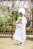 Celebración de una boda típica en Japón Imagen de archivo libre de regalías