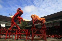 Celebración del año de Lion Dance At Chinese New de las cosas Foto de archivo libre de regalías