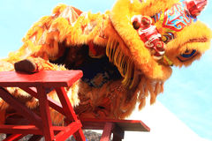 Celebración del año de Lion Dance At Chinese New de las cosas Fotografía de archivo