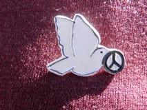 Celebración del día de paz Foto de archivo libre de regalías