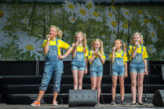 Celebración del día nacional de Suecia Foto de archivo libre de regalías