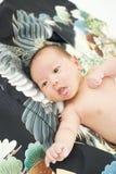 Celebración japonesa de Miyamairi para el bebé Fotos de archivo libres de regalías