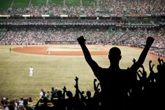 Celebración del ventilador de béisbol Fotos de archivo