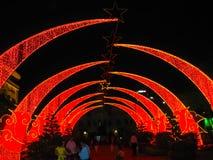 Celebraciones lunares del Año Nuevo de Tet en el Central Park del comunismo en Saigon Fotos de archivo