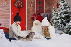 Celebrando la Navidad con su perro en casa juego de niños con el perro con el árbol de navidad adornado en el fondo Fotografía de archivo libre de regalías