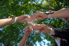 Celebrando recentemente marriaged Fotografia Stock