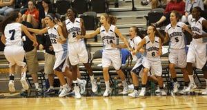 Celebração dos jogadores de equipe de Quebeque do basquetebol Fotos de Stock Royalty Free