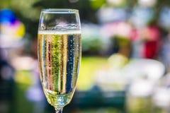 celebrate stockfoto