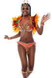 Celebrate this carnival with me. Royalty Free Stock Photo