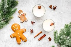 Celebrate new year winter evening with eggnog drink in glasses. ginger bread cookie, spruce branch and cinnamon . Stone Royalty Free Stock Photography