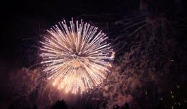 Celebrating firework in the black night sky Stock Photos