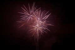Celebrating with fireworks. On a black sky Royalty Free Stock Images