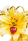 Celebrating love with beautiful flower. Love and flowers - beautiful yellow Iris and red sparkling heart for the celebration of a special day. This image is Royalty Free Stock Images