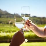 Celebrating with white wine Royalty Free Stock Image